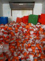 توزیع سهمیه جدید مرغ منجمد در خوزستان