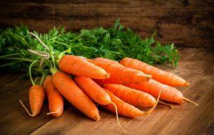 قیمت هویج آب میرود