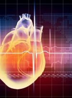 یکسوم مرگهای خوزستان، ناشی از بیماریهای قلبی عروقی